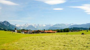Artenschutz-Debatte in Bayern; Symbolfoto: Canva